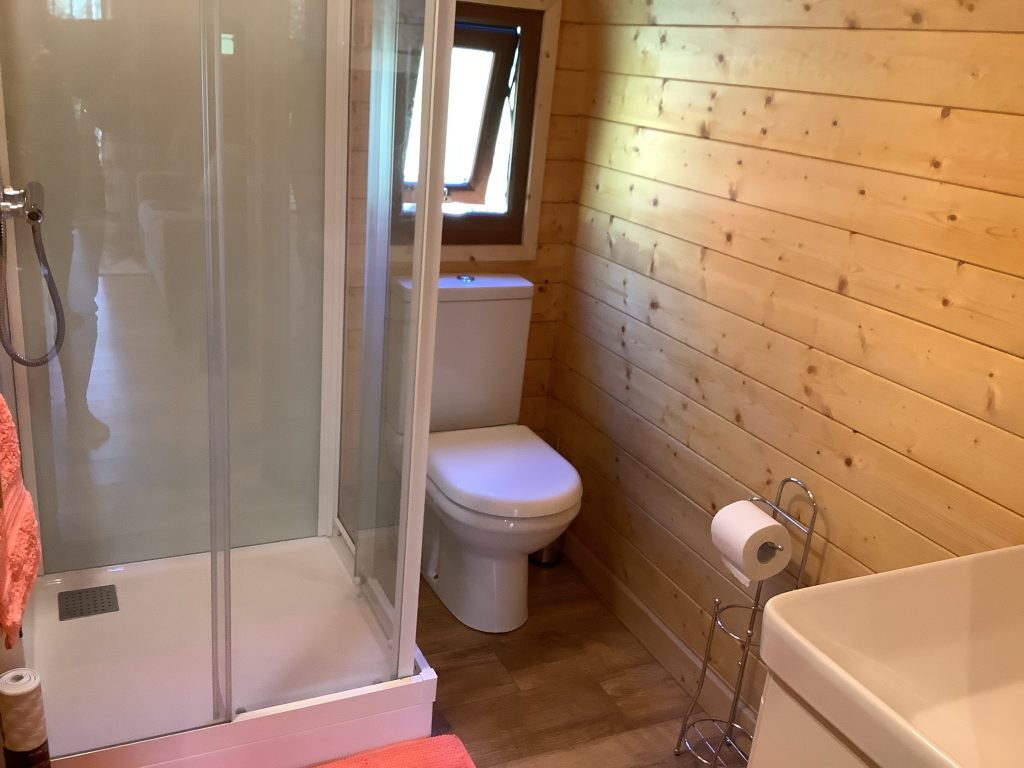 A picture showing a shower and toilet inside the glamping pod